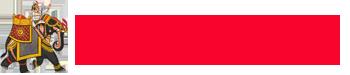 Delhi-Event-Website-Logo